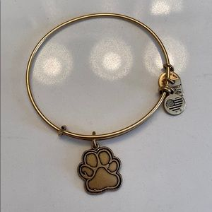 Paw print alex and ani bracelet